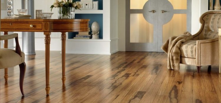 Why professional wood floor sanding is not as expensive as we think?