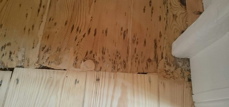 Wood Floor Sanding – How We Do It