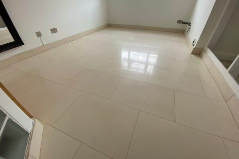 Limestone Floor and Grout Cleaning